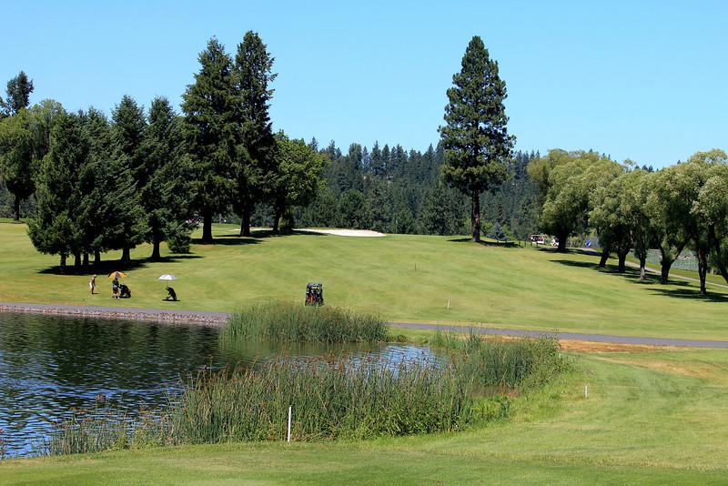 #8 Fairway, Wandermere GC,  Spokane, Wa
