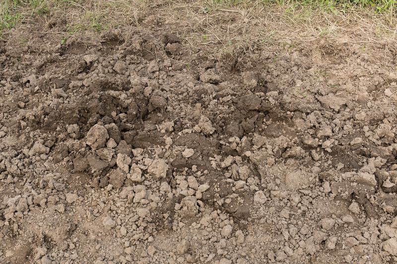 Mud Road Texture