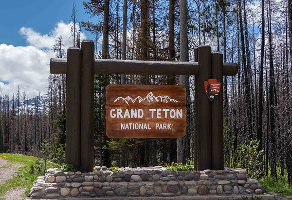 Grand Tetons June 2018