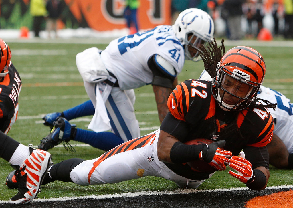 . Cincinnati Bengals running back BenJarvus Green-Ellis (42) scores a touchdown on a one-yard run in the first half of an NFL football game against the Indianapolis Colts, Sunday, Dec. 8, 2013, in Cincinnati. (AP Photo/David Kohl)