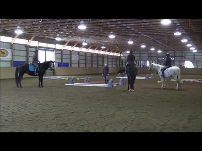 TSRC 2018-11-17 Milestone Sporthorses Video