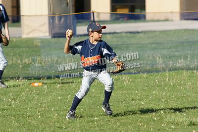 2010 9U Panther Blue Travel Baseball