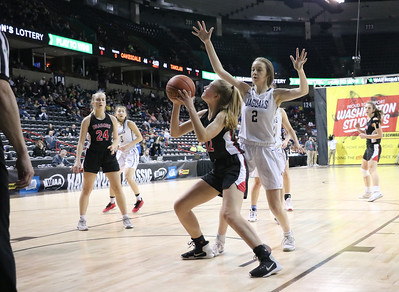 US Girls Basketball vs TC Prep at State 2B 3-4-20