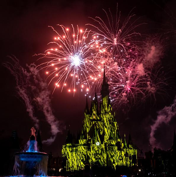 Disney-8160.jpg