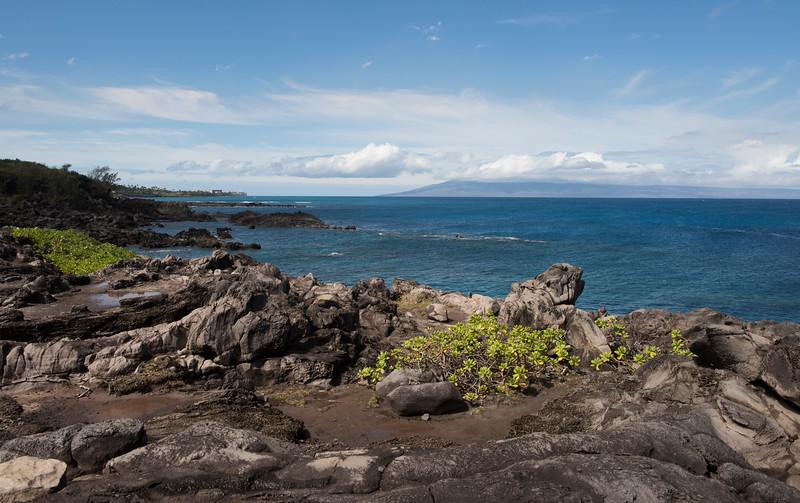 hawaii_0366.jpg