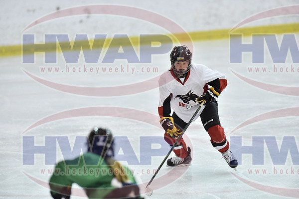 05 Selects Green