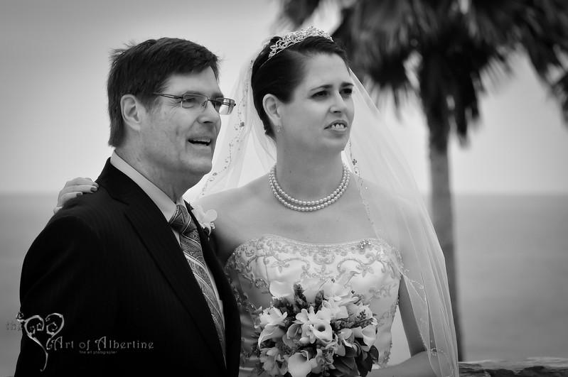 Wedding - Laura and Sean - D90-1306.jpg