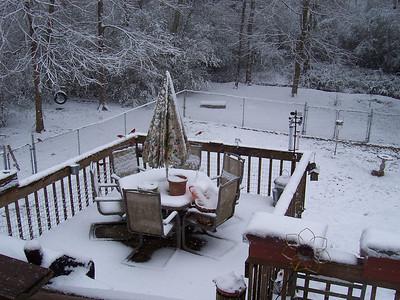 Snow Again! 12 Feb 2010