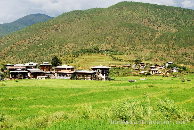 village and rice paddies around Divine Madman temple Bhutan.jpg