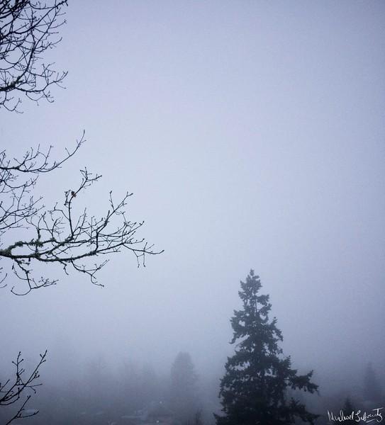 friendly valleysunrise fog 1231
