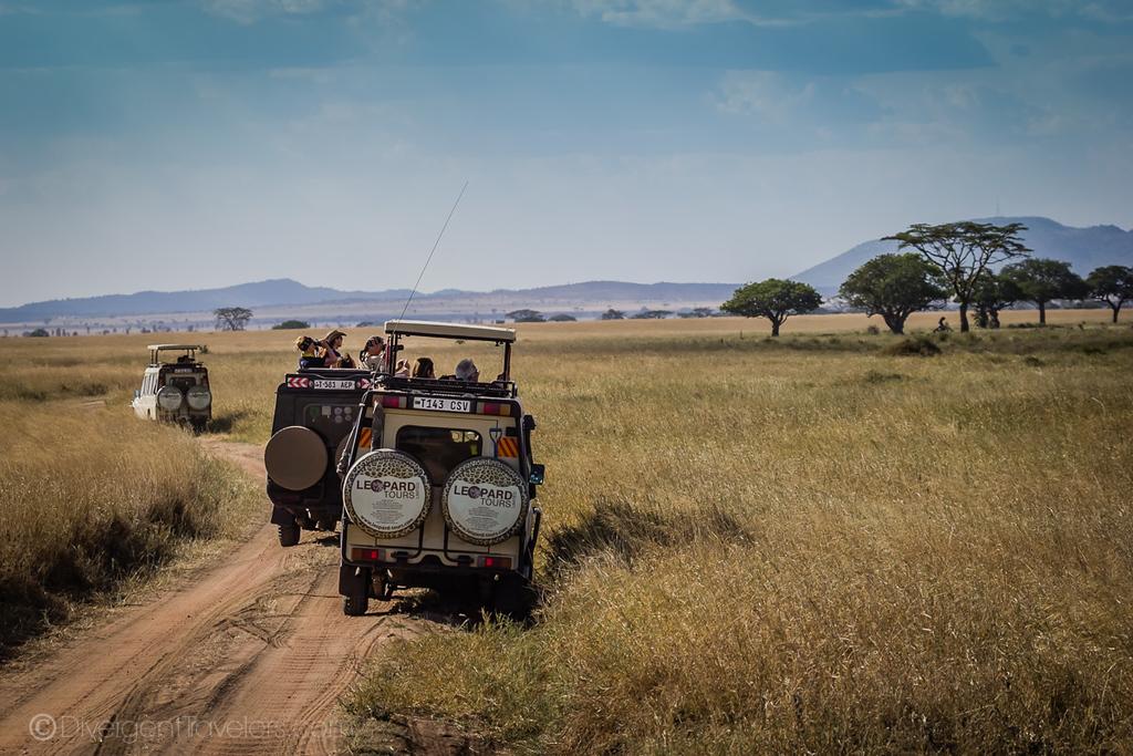 Safari trucks in the Seregeti, Tanzania