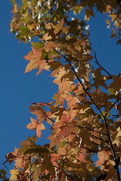 20121021-2012-10-2115-58-2813167.jpg