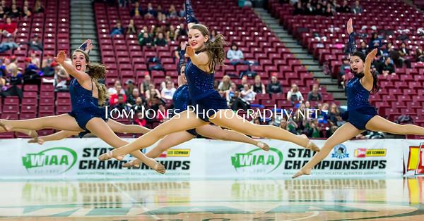 2015 State Dance & Drill