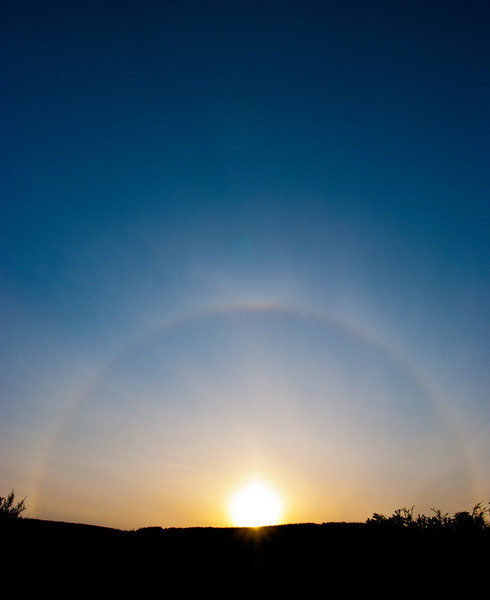 Saw this while out for a walk the other night, I think it's a solar halo.