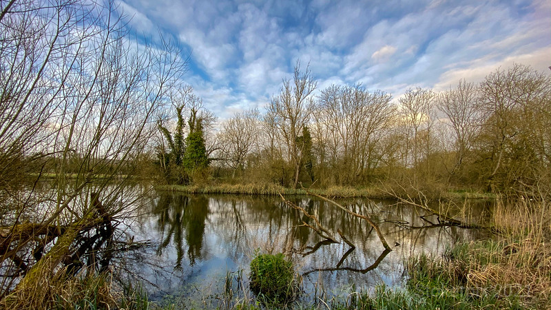The Kingfisher hide view