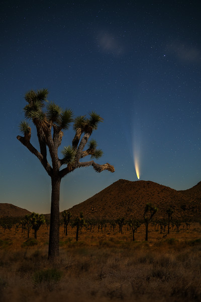 How to Find and Photograph Comet NEOWISE