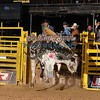 RYDER MAY-PBR-SA-DEC-44