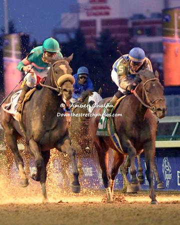 Saturday Races