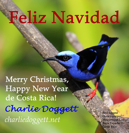 My Christmas Cards Costa Rica