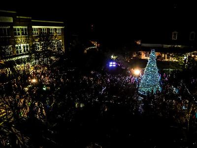 Baxter Tree Lighting 15