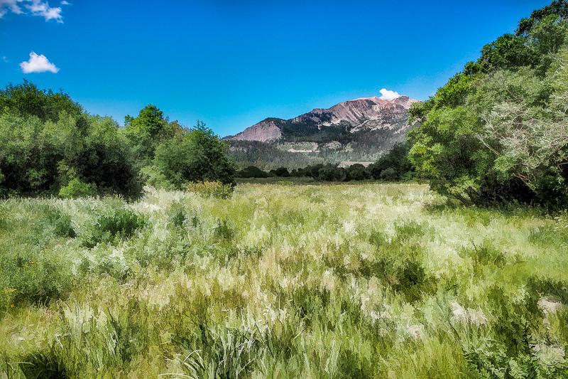 July 5 - Mammoth Mountain_ mammoth Lakes_ CA.jpg