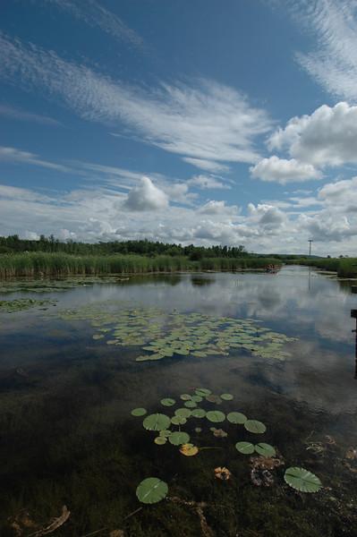 050705 7465 Canada - Midland - Wye Marsh with Brian _E _F _L ~E ~L.JPG