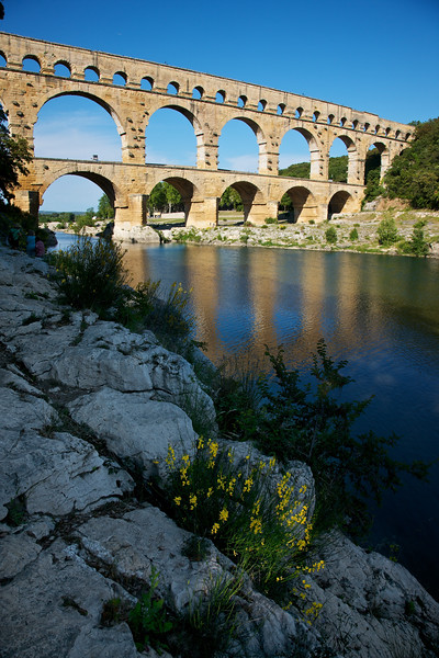 Pont du Gard and River, Flower and Stone.