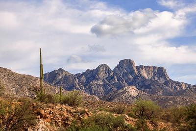 Catalina State Park (AZ)