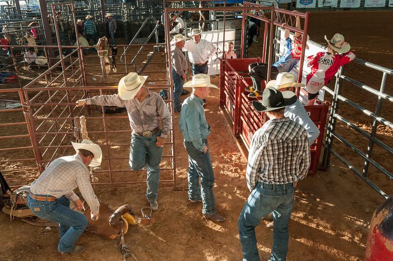 Dripping_Sorings_Rodeo_2016-1977.jpg