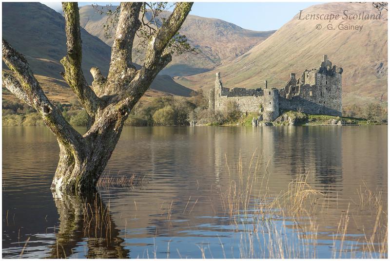 Kilchurn Castle, Loch Awe (2)