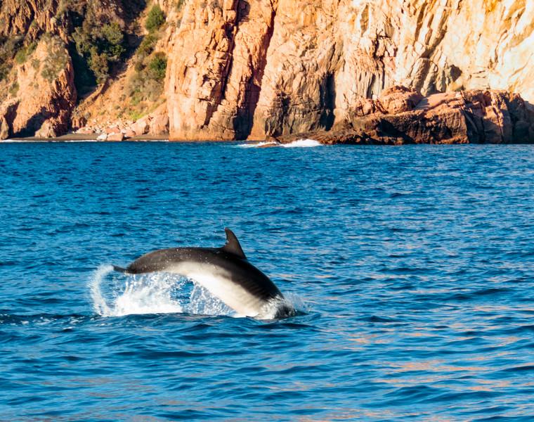 Scandola & Girolata, Island of Corsica, France