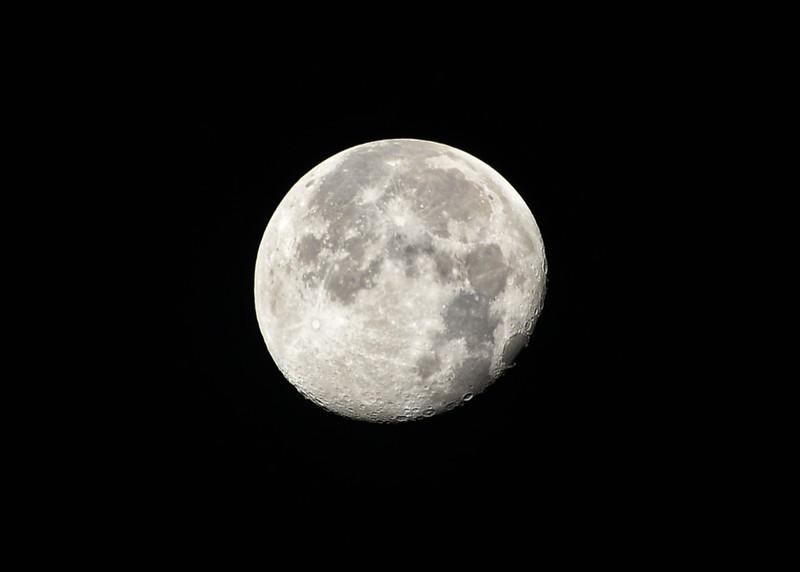 NEA_0414-7x5-Supper Moon.jpg
