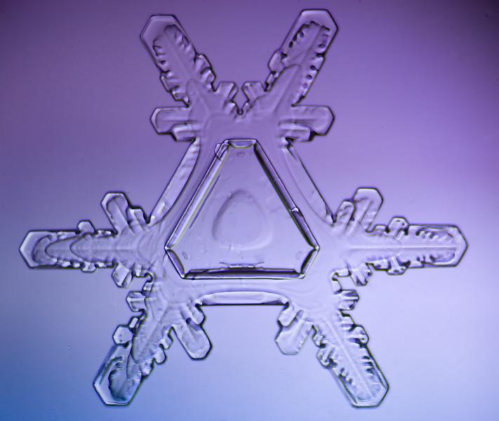 snowflake-5549-Edit.jpg