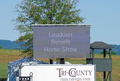 Loudoun Benefit Horse Show - 2021