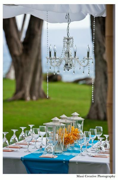 Maui_Wedding_Photographers_Sugarman_Estate_240.jpg