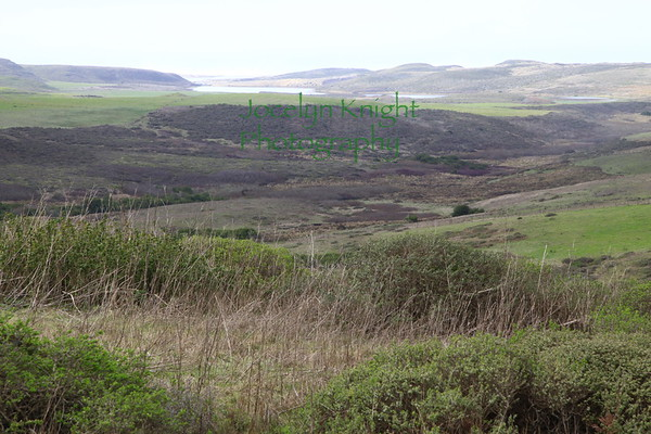 Pt. Reyes Natl Seashore L Ranch