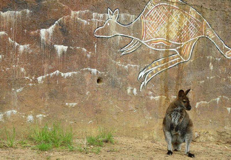 Cheyenne Mtn Zoo 2019 (1034).JPG