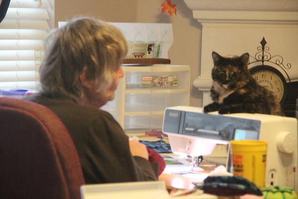11.10.13 Rhea B. Shaffer on Sewing Machine