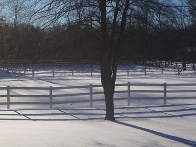 Snowmaggedon16