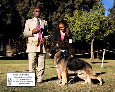 German Shepherd Dog Club of Long Beach - September 2013