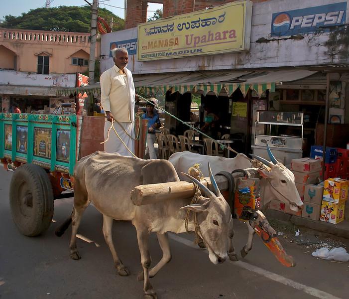 Bangalore India 2541.jpg