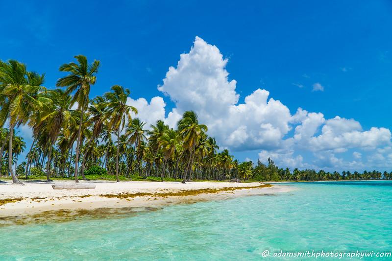 Paradise_Isla_Saona_Dominican_Republic-2.jpg