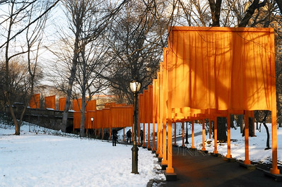 The Gates (Christo & Jeanne-Claude's NYC Central Park Project Feb. 2005)