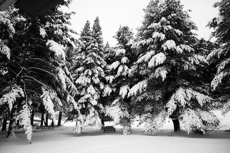 02-04-2021-winter-9.jpg