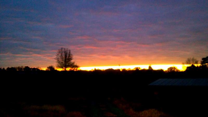 2011-11-15_06-44-42_419_edit0.jpg