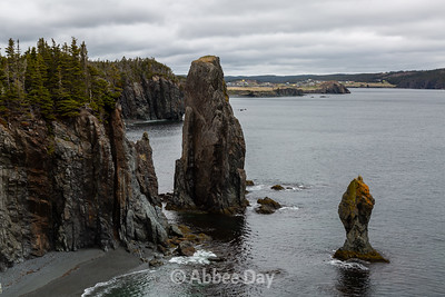 Looking back at Port Rexton