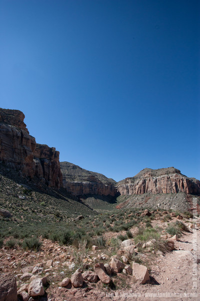 022_AriZona2011_YN8W0243.jpg