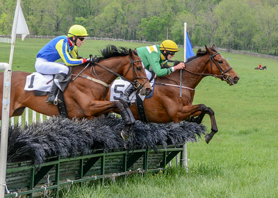 2019 Middleburg Hunt Point to Point