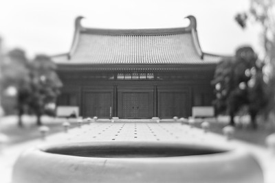 Tsz Shan Monastery  慈山寺  2017