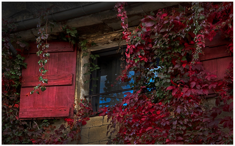 107.scott carter.2. Windows in Red.jpg
